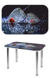 Прямоугольный стеклянный стол СО-Д-02-5