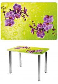 Прямоугольный стеклянный стол СО-Д-01-10